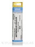 Antimonium Crudum 6CH - 140 Granules (5.5g)