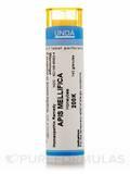 Apis Mellifica 200K - 140 Granules (5.5g)