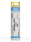 Apis Mellifica 9CH - 140 Granules (5.5g)