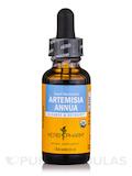 Artemisia Annua - 1 fl. oz (30 ml)