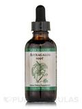 Astragalus Root 2 oz