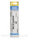 Bellis Perennis 30K - 140 Granules (5.5g)