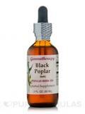 Black Poplar Populus Nigra 1DH 2 oz (60 ml)