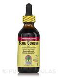 Blue Cohosh Root Extract 2 fl. oz