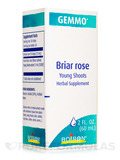 Briar Rose Rosa Canina 2 oz (60 ml)
