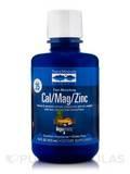 Cal/Mag/Zinc - Piña Colada 16 fl. oz (473 ml)