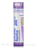 Calcarea Fluorica 200ck