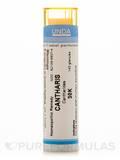 Cantharis 30K - 140 Granules (5.5g)