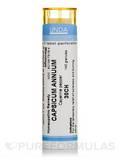 Capsicum Annuum 30CH - 140 Granules (5.5g)