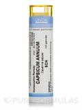 Capsicum Annuum 5CH - 140 Granules (5.5g)