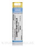 Carbo Vegetabilis 30CH - 140 Granules (5.5g)
