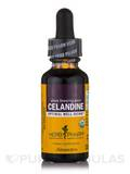 Celandine - 1 fl. oz (30 ml)