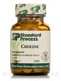 Choline - 90 Tablets