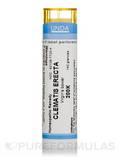 Clematis Recta 200K - 140 Granules (5.5g)