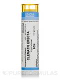 Clematis Recta 9CH - 140 Granules (5.5g)