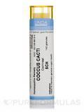 Coccus Cacti 5CH - 140 Granules (5.5g)