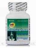 Coenzyme Q10 (Dogs) 30 mg 60 Capsules