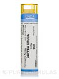 Coffee Cruda 6CH - 140 Granules (5.5g)