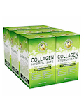 Collagen Hydrolysate Convenience Pack, Unflavored - 20 Stick Packs
