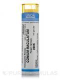 Conium Maculatum 200K - 140 Granules (5.5g)