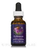 Echinacea Dropper 1 fl. oz