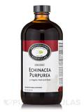 Echinacea Purpurea (Herb & Root) 16 oz (473 ml)