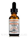 Echinacea (Herbal Tincture) - 1 oz (29.57 ml)