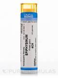 Epiphysinum 4CH - 140 Granules (5.5g)