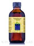 Equisetum Arvense (Horsetail) - 4 fl. oz (120 ml)