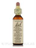 Flower Essence Chestnut Bud - 0.7 fl. oz (20 ml)