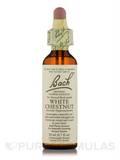 Flower Essence White Chestnut - 0.7 fl. oz (20 ml)