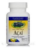 Full Spectrum Acai Extract 500 mg 60 Capsules