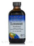 Full Spectrum Elderberry Fluid Extract 8 fl. oz (236.56 ml)