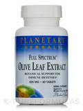 Full Spectrum Olive Leaf Extract 825 mg 60 Tablets