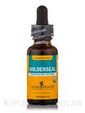 Goldenseal Alcohol-Free - 1 fl. oz (30 ml)