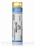 Graphites 15CH - 140 Granules (5.5g)