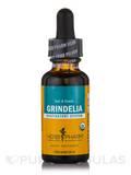 Grindelia - 1 fl. oz (29.6 ml)
