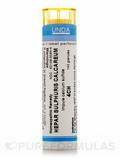Hepar Sulfur 4CH - 140 Granules (5.5g)