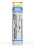 Histaminum Hydrochloricum 6CH - 140 Granules (5.5g)