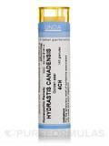 Hydrastis Canadensis 4CH - 140 Granules (5.5g)