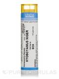 Hyoscyamus Niger 5CH - 140 Granules (5.5g)