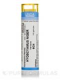 Hyoscyamus Niger 6CH - 140 Granules (5.5g)