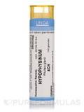 Hypophysinum 4CH - 140 Granules (5.5g)