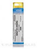 Ignatia Amara XMK - 140 Granules (5.5g)