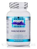 Immune Boost 90 Tablets