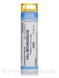 Kali Bichromicum 12CH - 140 Granules (5.5g)