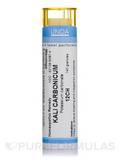Kali Carbonicum 12CH - 140 Granules (5.5g)