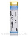 Lachesis Mutus 30CH - 140 Granules (5.5g)