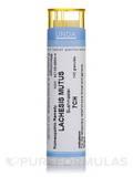 Lachesis Mutus 7CH - 140 Granules (5.5g)