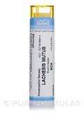 Lachesis Mutus 9CH - 140 Granules (5.5g)